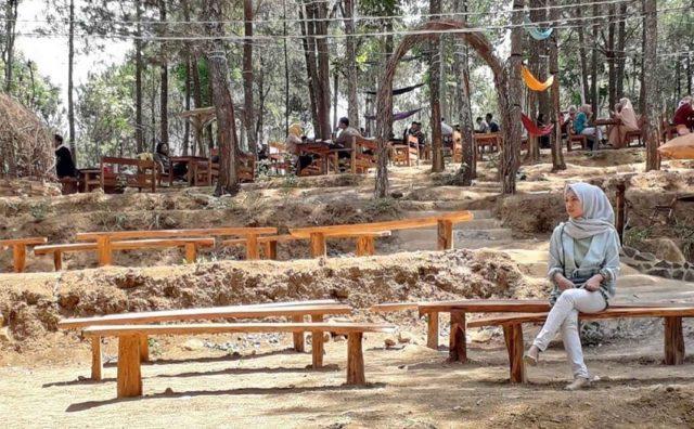 Kedai Kopi 66, Nongkrong Bernuansa Hutan Pinus di Kediri