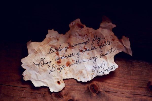 Mengenal puisi bahasa Inggris beserta penyair terfavorit.