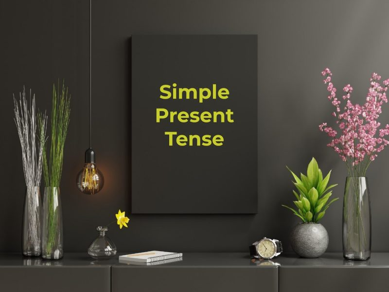 simple present tenses dan contoh kalimat.